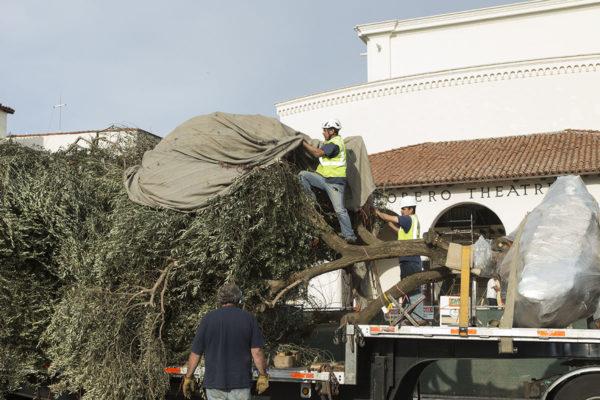 Lobero Restoration - Return of the Trees 11/7/13 Lobero Theatre
